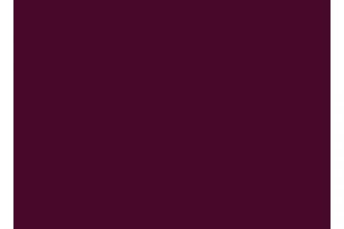 4548 violet