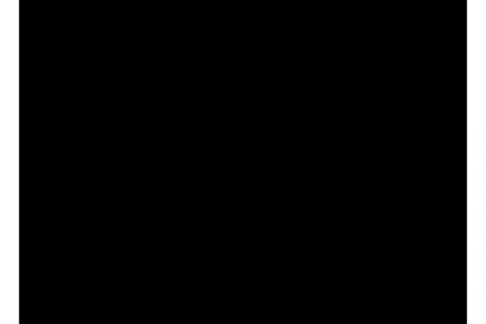 8421 black matt