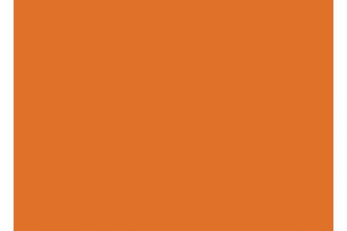9133 orange