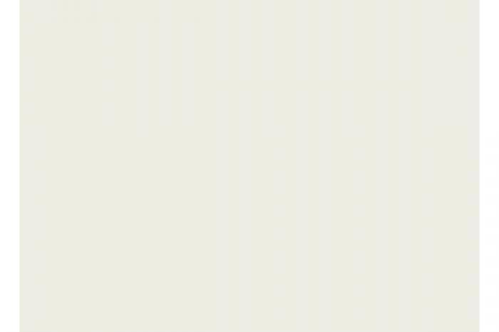 6725 arctic white