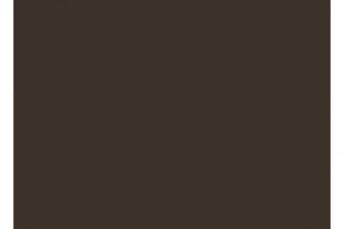 96300 brown matt