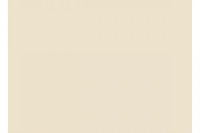 9898 vanilla