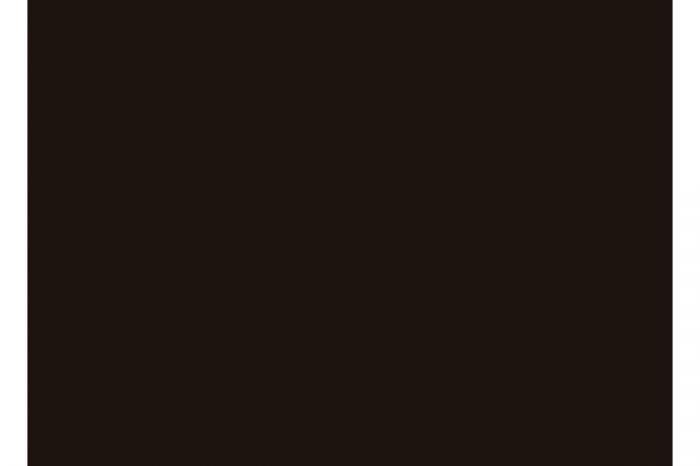 9900 black